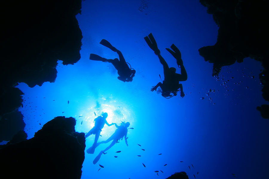 Gold Coast Advanced Scuba Diving Tours